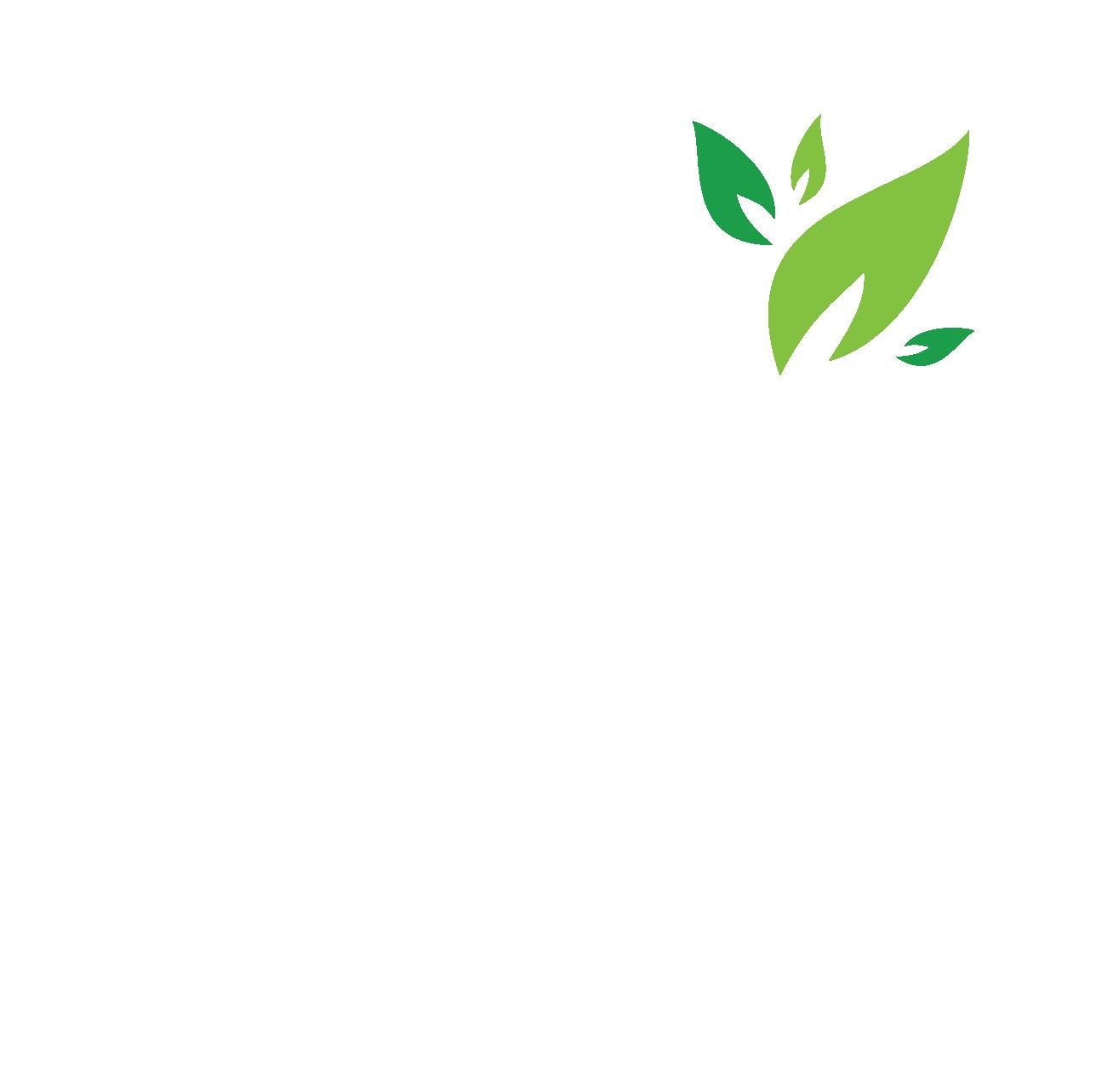 Lifegiva Company
